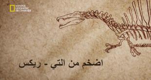 خاص الديناصور HD : اضخم من التي-ريكس