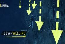 صورة لا مكان للضعفاء – نفّذ أو إِنفذ HD : تأثير المحيط القاتل