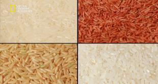 ملفات الغذاء HD : الأرز