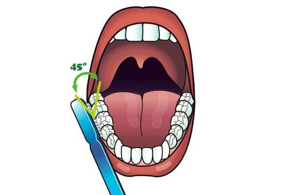 تنظيف الأسنان بدقة و تركيز