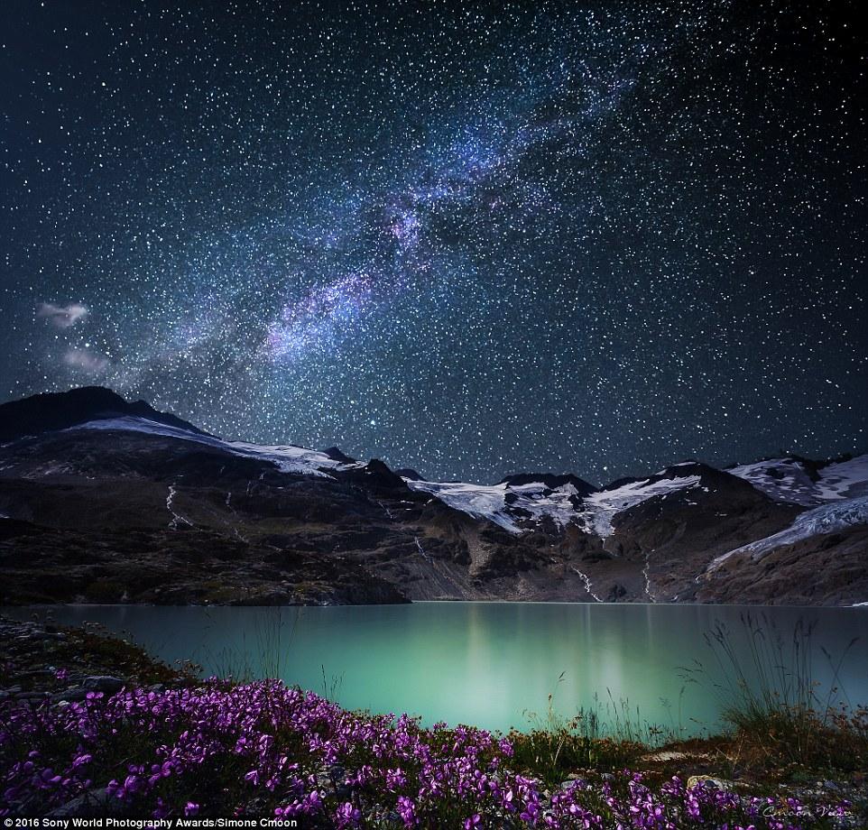 صور مذهلة من الطبيعة في مسابقة SONY للتصوير الفوتوغرافي - موقع علوم العرب