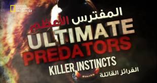 المفترسات HD : أقوى الحيوانات المفترسة - الغرائز القاتلة