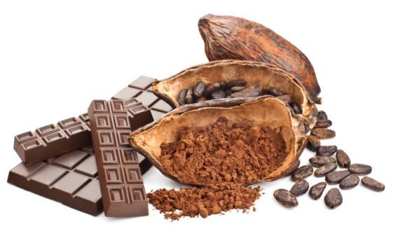 الكاكاو - الشيكولاتة الداكنة