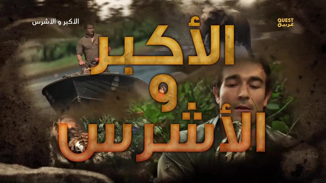 الأكبر و الأشرس HD الموسم 1 - حلقة 1 الأناكوندا - موقع علوم العرب