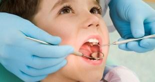 مقال - ما هي الأغذية المفيدة للأسنان وكيف نحميها من التسوس؟