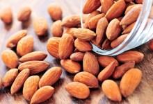 صورة مقال – اللوز صحي ومغذٍ و يساعد على خفض الوزن