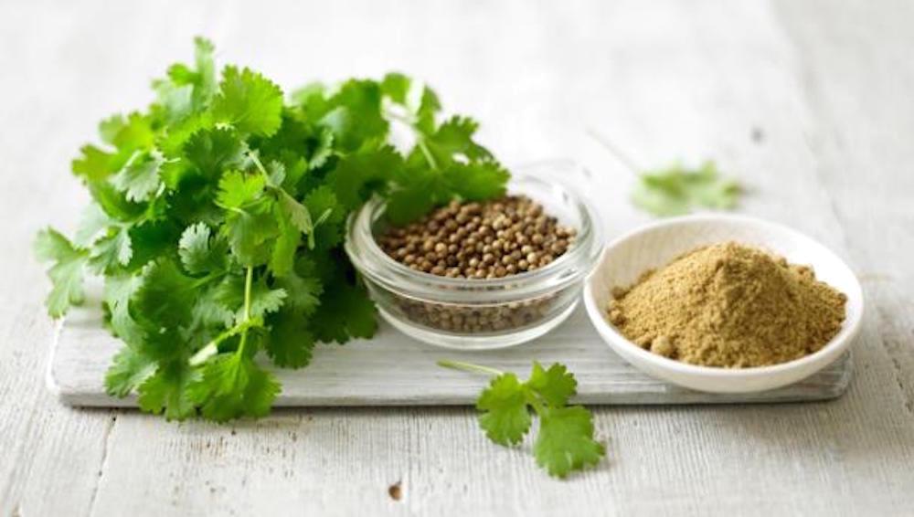 مقال - الكزبرة نكهة مميزة للطعام و فوائد صحية جمة - موقع علوم العرب