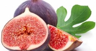 مقال - التين طازجا أو مجففا : مذاق طيب وفوائد علاجية جمة