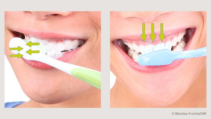 التنظيف الصحيح للأسنان