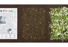 صورة مقتطف – من اليابان : جريدة بعد أن تقرأها تتحول إلى نباتات وزهور
