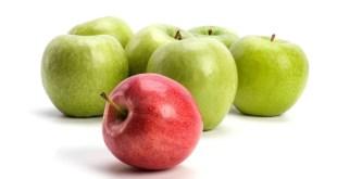 مقال - لماذا يغني تناول التفاح بانتظام عن زيارة الطبيب؟