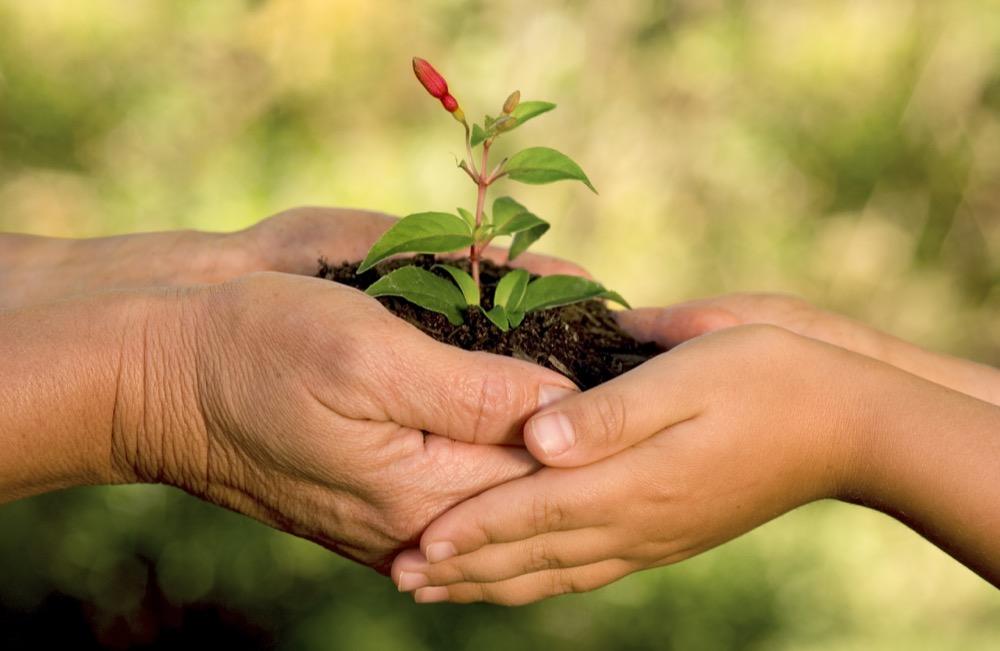 مقال - 11 مادة تهدد البيئة يجب أن تتوقف عن استخدامها! - موقع علوم العرب