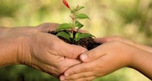 مقال - 11 مادة تهدد البيئة يجب أن تتوقف عن استخدامها!