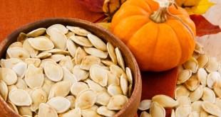 مقال – اليقطين : ثمرة وبذور صحية جدا بطعم لذيذ