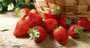 الفراولة .. فاكهة حساسة غنية بفوائد جمة !!