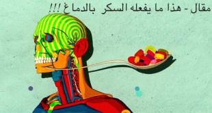 مقال - هذا ما يفعله السكر بالدماغ !!!