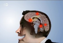صورة بيولوجيا الضحك – التاريخ الطبيعي للضحك