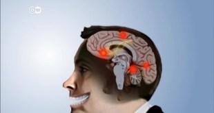 بيولوجيا الضحك - التاريخ الطبيعي للضحك