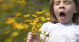 مقال – ماذا يحدث في جسمنا عندما نعطس؟