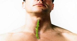 مقال - 10 وصفات طبيعية لعلاج التهاب الحلق