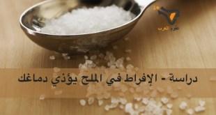 دراسة – الإفراط في الملح يؤذي دماغك