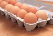 مقال - أيهما أفضل .. وضع البيض داخل الثلاجة أم خارجها؟