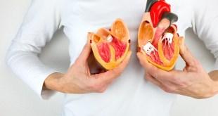 مقال – ما أسباب فشل القلب؟