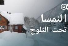 النمسا تحت الثلوج