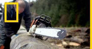 الجزيرة المتمردة: حلقات ألاسكا: الخبرات الثمينة