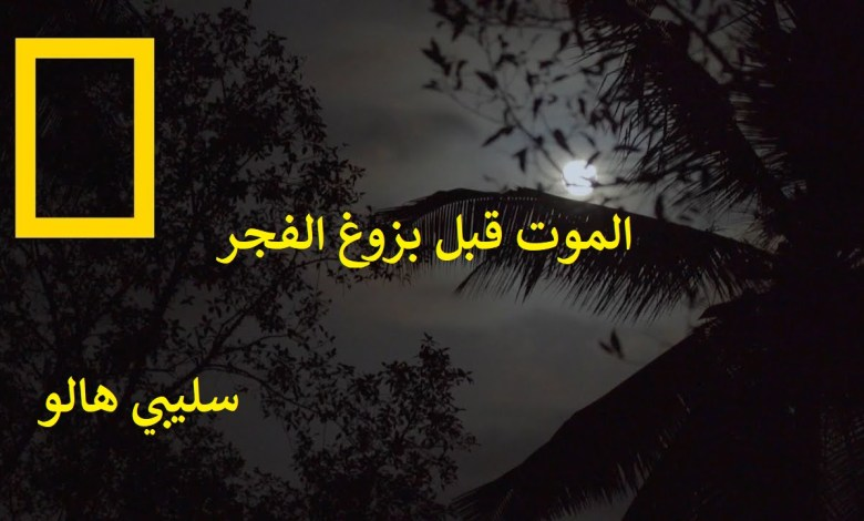 الموت قبل بزوغ الفجر : سليبي هالو