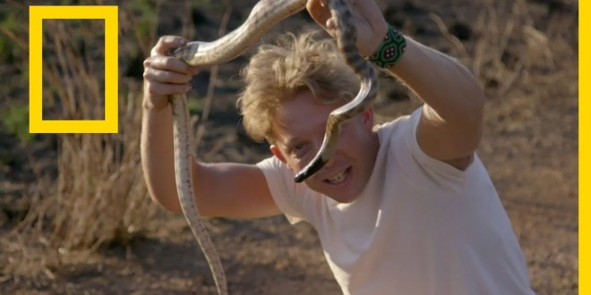 في البراري مع جاك راندال : صيد الأفعى الشبح