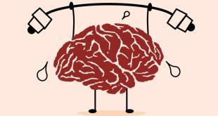 مقال – 5 أطعمة تؤذي الدماغ