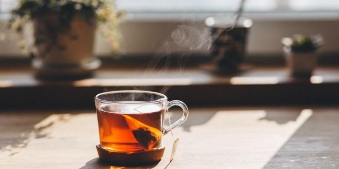 احذر..كيس شاي واحد قد يسرب مليارات جزيئات البلاستيك إلى مشروبك