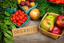 صورة مقال – ما هي الأغذية العضوية وكيف نختار الأفضل منها؟