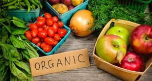 مقال – ما هي الأغذية العضوية وكيف نختار الأفضل منها؟