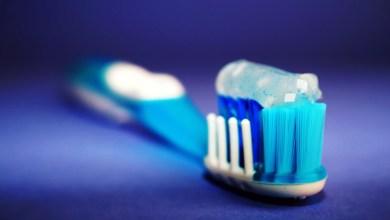 كيف يمكن الاحتفاظ بفرشاة الأسنان في الحمام بشكل صحيح؟