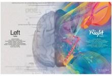 صورة ما هو سبب وجود نصفين في الدماغ البشري؟