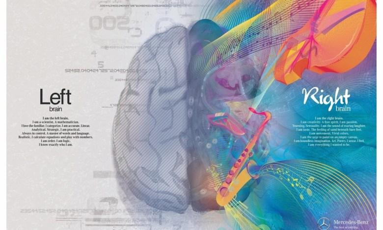 ما هو سبب وجود نصفين في دماغنا ؟
