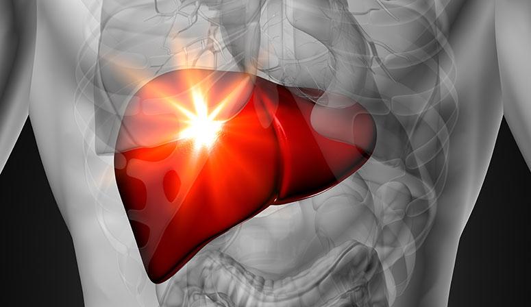 أطعمة تقوي الكبد