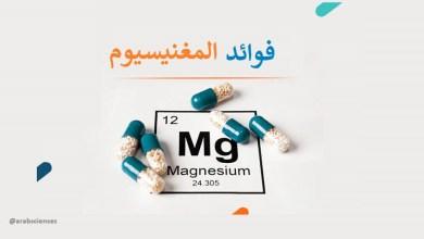 فوائد المغنيسيوم لصحة الإنسان