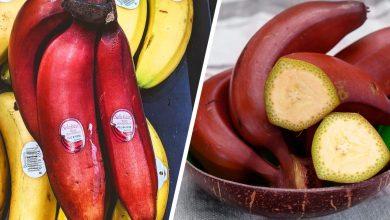 فوائد الموز الأحمر المذهلة