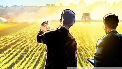 Photo of يمكن للمزارعين قريبًا أن يتحوطوا من مخاطرهم ببيانات الطقس اللامركزية