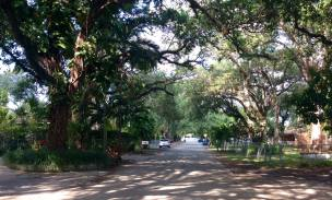 Street Facing West