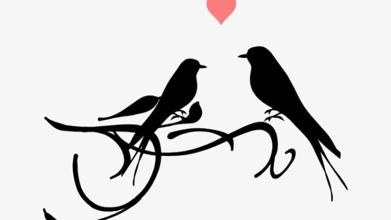 الحبُّ بات شيء محال