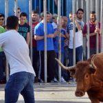 Torres, Maluenda y Cuarte con festejos taurinos