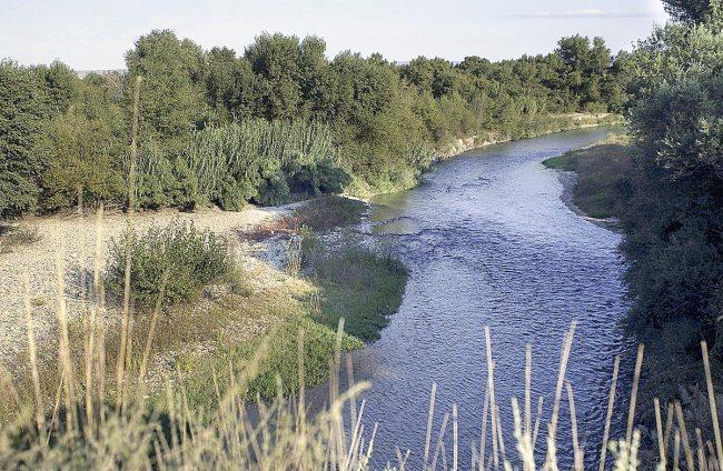 Río Gállego en Peñaflor.