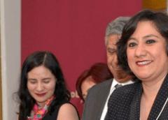 Irma Eréndira Sandoval, Secretaría de la Función Pública