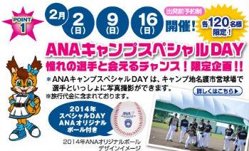 ANAスカイホリデーの「北海道日本ハムファイターズ沖縄キャンプ応援ツアー」で北海道日本ハムファイターズの春季キャンプに行こう