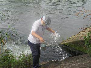 荒川流域一斉水質調査