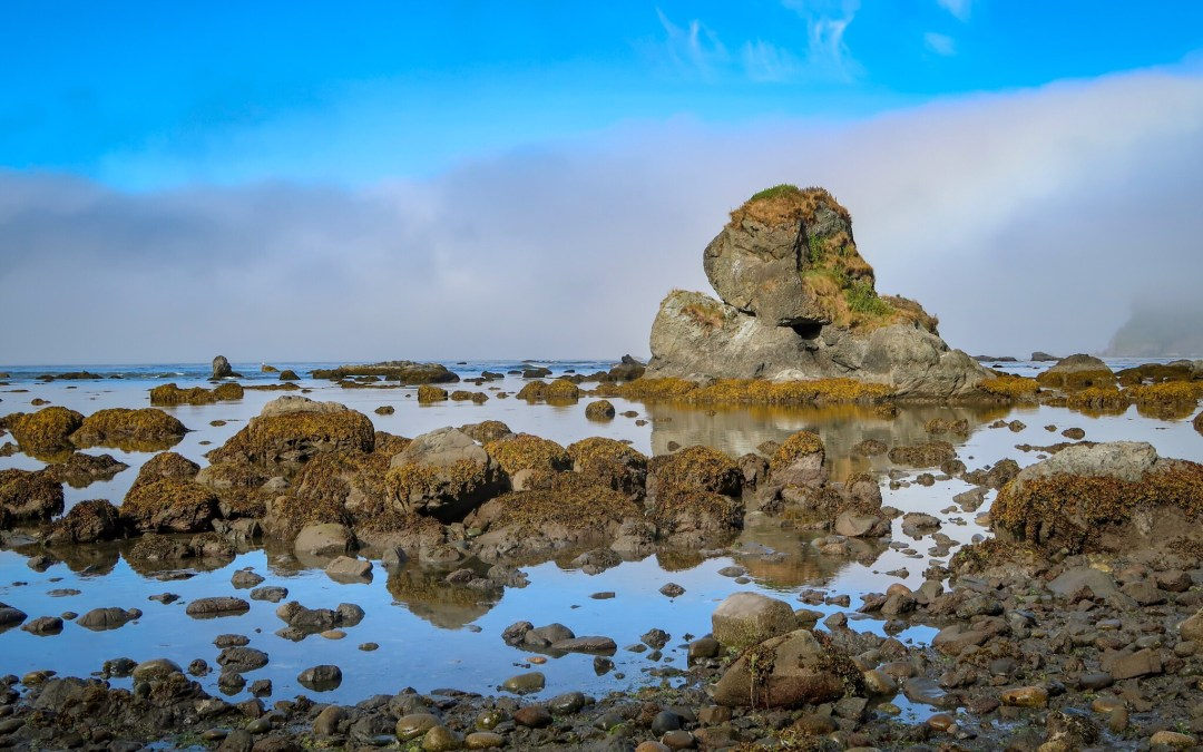 Ozette Triangle Day 3: Exploring the Rugged Beauty of Cape Alava
